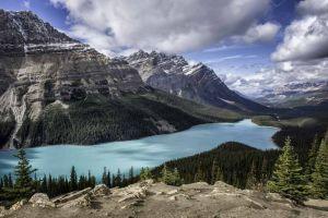 Peyto Lake in den kanadischen Rockies am Icefields Parkway