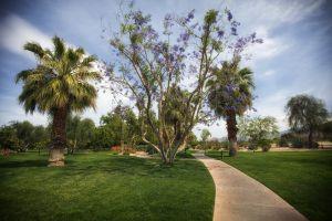 Palm Springs Park