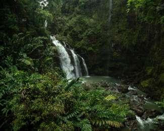 Auf Maui gibt es verschiedene Wasserfälle.