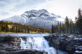 Ungefähr 30 Minuten südlich von Jasper befinden sich die Athabasca Falls.