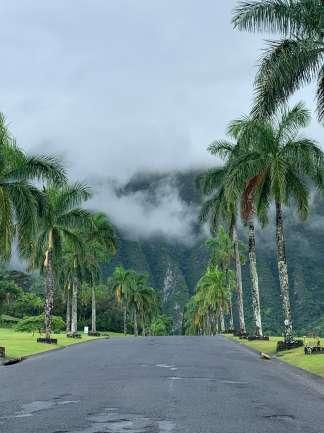 Wunderschöne Natur und ruhig gelegen